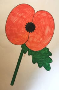 Poppy drawing by Bailey