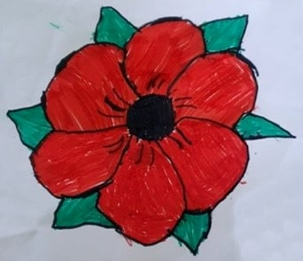 Poppy drawing by Charlotte